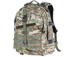 Kiwidition Ekara (Multicam)